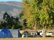 Camping site with shady tree and views of the Grampians
